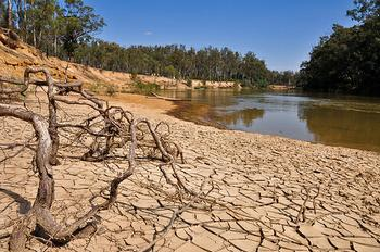 Murray River Drought