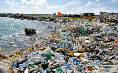 How Does So Much Garbage Get In Our Ocean?